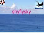 shyflysky