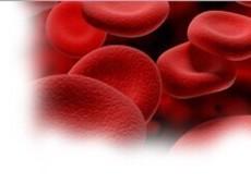血液肿瘤研究进展回顾