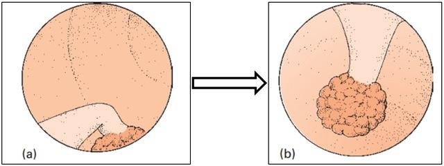 图7.png