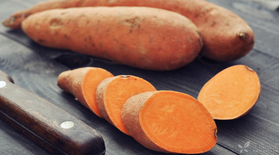 【题图】红薯发芽-900x500.jpg