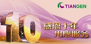 天根十周年 网络送祝福活动