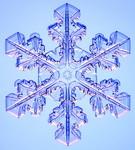 web_snow