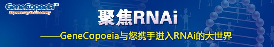 聚焦RNA--- GeneCopoeia与您携手进入RNAi的大世界