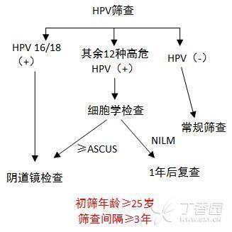 HPV初筛4.jpg