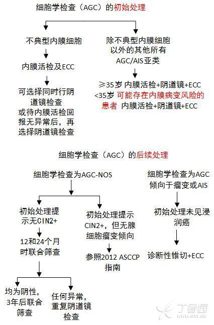 AGC9.jpg