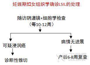 孕妇LSIL12.jpg