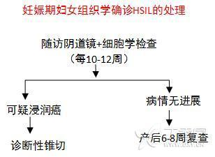 孕妇HSIL13.jpg